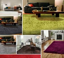 Modern Small Extra Large Shaggy Rugs Luxury Area Rug Soft Carpet 5cm Thick Mats
