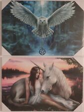 Anne Stokes Limited Exclusive Edition Fibre Optic Canvas (Choice of 2)