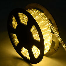 100 ft 2 Wires LED Decorative Rope Light All Occcasion Residential Business