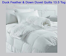 141470902575_2.jpg : feather and down quilts - Adamdwight.com