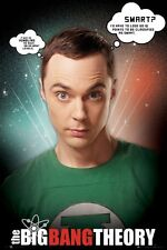 New The Big Bang Theory Sheldon Cooper Quotes TBBT Maxi Poster