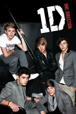New One Direction Lounging on the Stairs 1D Poster