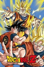 Dragon Ball Z Goku DBZ Poster 61x91.5cm