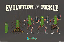 Rick and Morty - Evolution Of The Pickle - Poster Plakat - Größe 91,5x61 cm