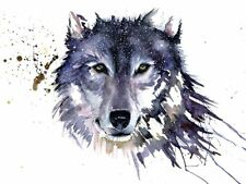 Sarah Stokes Canvas Prints of Animal Paintings Fine Art Pictures 33 Different