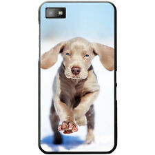 Weimaraner Vorstehhund Grey Ghost Dog Hard Case For Blackberry Z10