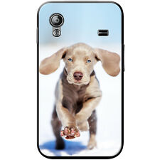 Weimaraner Vorstehhund Grey Ghost Dog Hard Case For Samsung Galaxy Ace (S5830)
