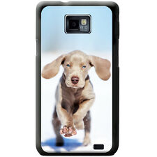 Weimaraner Vorstehhund Grey Ghost Dog Hard Case For Samsung Galaxy S2 (i9100)