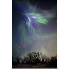 Poster Print Wall Art entitled View Of The Aurora Borealis Over The Chugach