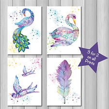 SET of 4 Watercolour Feathers Swan Peacock Decor A3 Wall Art prints picture