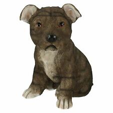 Lesser & Pavey Staffordshire Bull Terrier The Style LP26667