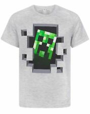 Minecraft Creeper Inside Boy's Grey Cotton T-Shirt Sizes 2 to 14 Years