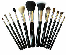 Zoe London Make up brush set High quality Foundation Eyeshadow eye liner & more.