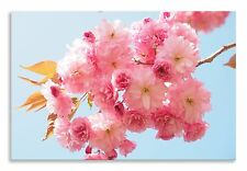 Flower Cherry Blossom Pink Floral Canvas Wall Art Picture Home Decor Print