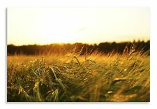 Landscape Barley Field Sunset Yellow Canvas Wall Art Picture Home Decor