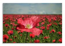 Poppy Field Canvas Red Green Landscape Wall Art Picture Home Decor