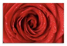 Red Rose Canvas Beautiful Red Flower Landscape Wall Art Picture Home Decor