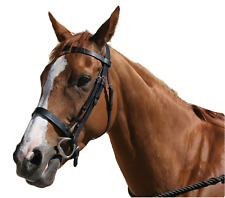 Oakfield Hunt Bridle