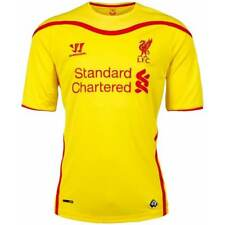 Liverpool Kids (Boys Youth) Away Jersey 2014 – 2015