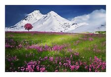 Beautiful Mountain Canvas Pink Green Landscape Canvas Wall Art Picture Decor