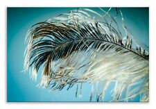 Feather Canvas Blue Green Nature Landscape Wall Art Picture Home Decor
