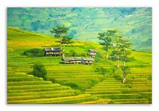 Paddy Field Canvas Green Hills Landscape Wall Art Picture Home Decor