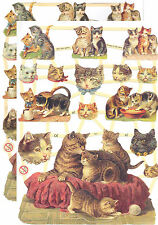 Cromo EF Recortes Gato 7301 En relieve Ilustraciones Cat