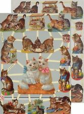Cromo EF Recortes Gato 7245 En relieve Ilustraciones Cat