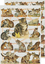 Cromo EF Recortes Gato 7407 En relieve Ilustraciones Cat