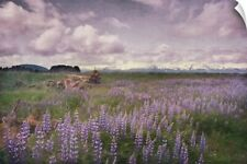 Wall Decal entitled Meadow of Lupine flowers in Alaskan wilderness. Moss covered
