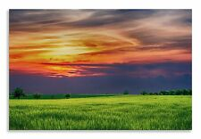 Countryside Landscape Abstract Green Orange  Canvas Wall Art Picture Home Decor