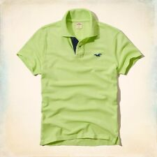 BRAND NEW GENUINE HOLLISTER PEARL STREET CLASSIC FIT POLO LG. UK SELLER.