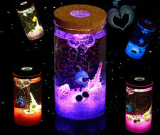 DIY Moss Micro Landscape Cylinder Glass Bottle with Colorful LED Light Succulent