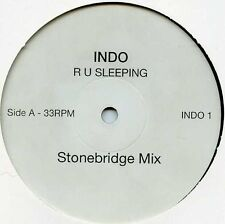 "Indo-R U Sleeping 2X12""-Not On Label, INDO 1,, DBLPROMO Plain Sleeve 4 Mix"