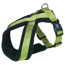 NOBBY COMFORT PETTORINA CANI CLASSIC VERDE LIME, varie misure, NUOVO