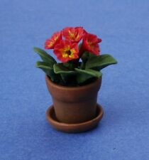 Miniature Dollhouse Red Primula Flowers Plant 1:12 Scale New