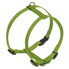 NOBBY PETTORINA CANI CLASSIC VERDE LIME, varie misure, NUOVO