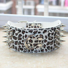 "Dog Collar 3"" Leather Spiked Studded Large Dog Collar Pit Bull Bully Mastiff"