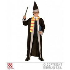 Costume Mago Harry