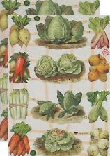 Cromo EF Recortes Huerto 7383 En relieve Ilustraciones Vegetables