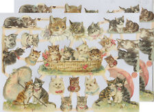 Cromo EF Recortes Gato 7415 En relieve Ilustraciones Cat