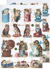 Cromo EF Recortes Gato 7360 En relieve Ilustraciones Cat