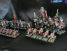 Warhammer Guerrieri del Caos/Warriors of Chaos Painted