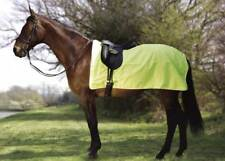 Rhinegold Waterproof 3/4 Flourescent Ride-On Rug  Cotton Lined Exercise Sheet
