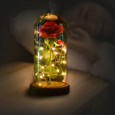 Beauty And The Beast Red Rose In A Glass Dome With LED Light Wooden Base Gifts
