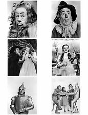 wizard of oz iron on t shirt transfer or sticker  6 pictures on A4 sheet