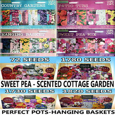 COTTAGE GARDEN SEEDS SCENTED FLOWERS PATIO TUBS PLANTS HANGING BASKET WILD POPPY