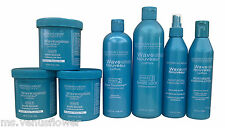 SoftSheen Carson Wave Nouveau Coiffure Texturising System Products