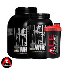 Animal Whey Protein 1.8kg / 907g  Lean Muscle Growth + FREE ACE SHAKER