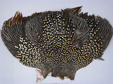 Jungle cock cape Super quality, fly tying feathers, craft